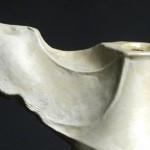 scultura in ceramica giulio busti